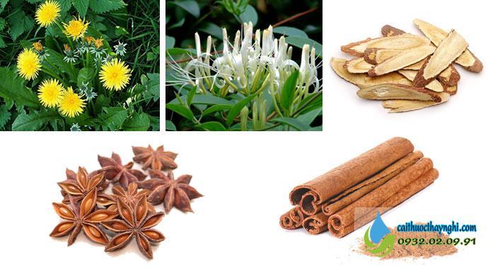 Những thảo dược quý được bào chế thành nước súc miệng cai thuốc lá