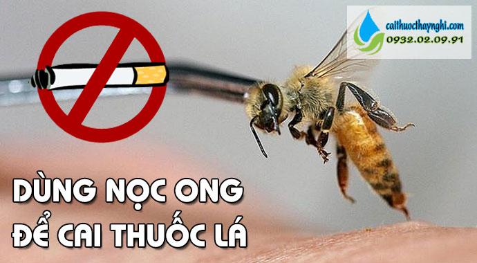 dùng nọc ong để cai thuốc lá