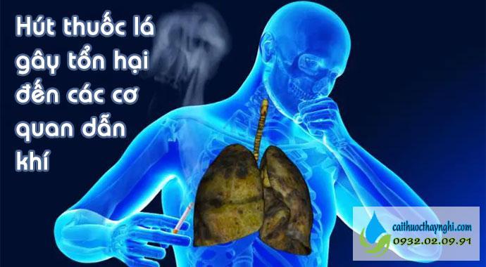 hút thuốc lá gây tổn hại đến các cơ quan dẫn khí