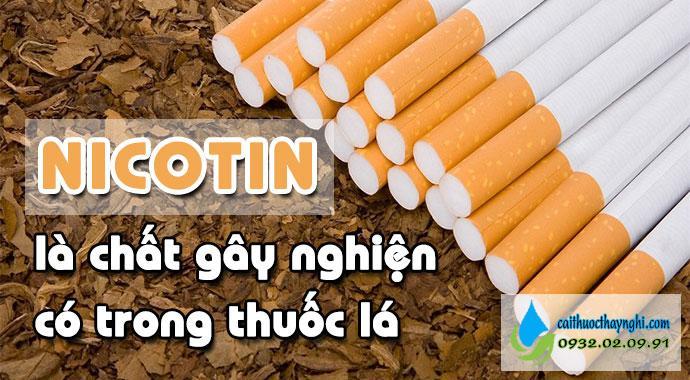 nicotin là chất gây nghiện có trong thuốc lá