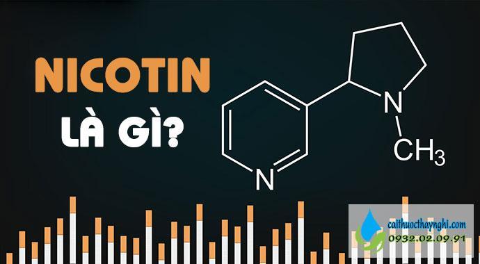 nicotin là gì