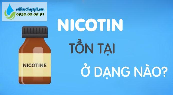 nicotin tồn tại ở dạng nào