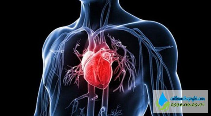 tác dụng của việc bỏ thuốc lá với tim mạch