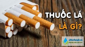 thuốc lá là gì