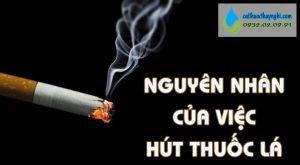 nguyên nhân của việc hút thuốc lá