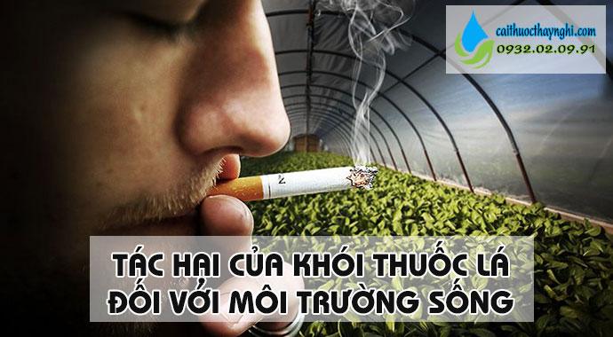 tác hại của khói thuốc lá với môi trường