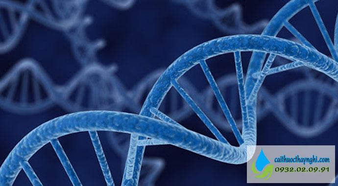 di truyền gây ung thư phổi