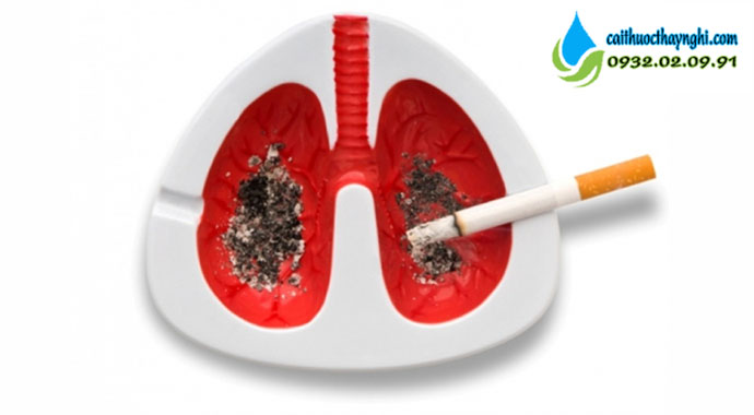 hút thuốc lá gây ưng thư phổi